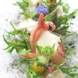 Lobster Garden, Hollandaise Espuma